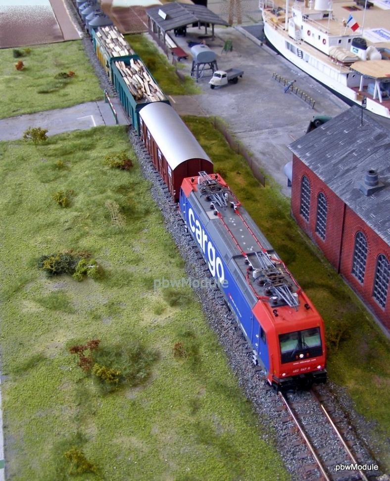 SBB Cargo mit Güterzg