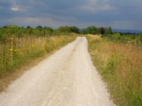 Spur 0 Feldweg pbw0mef